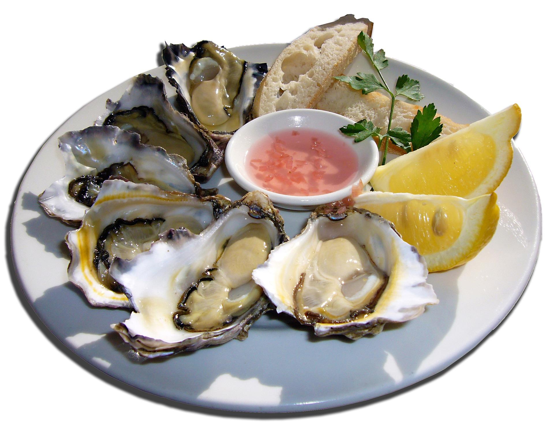 marisco ostras